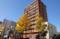 【419】Thokan-Mansion大濠公園駅前(「大濠公園」車站徒步4分鐘!)
